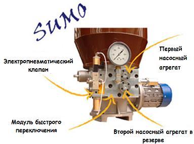 Sumo Details